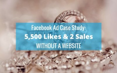 Facebook Advertising Case Study: 5,500 Likes and 2 Sales (within 1 week and ad spend of £66)